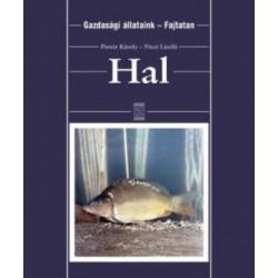 Hal - Fajtatan