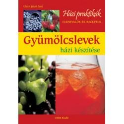 Gyümölcslevek házi készítése - Házi praktikák