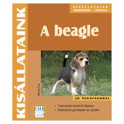 A beagle