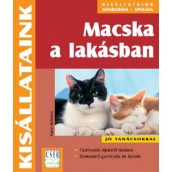 Macska a lakásban 2. kiadás