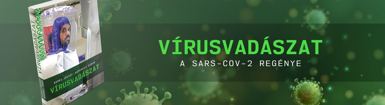 Vírusvadászat